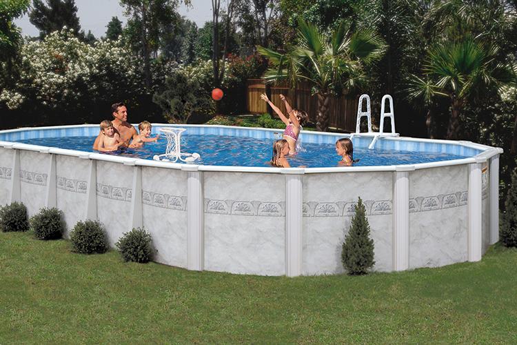 algae accumulating in your pool